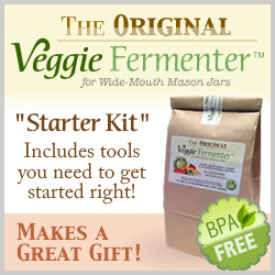Original Veggie Fermenter Starter Kit