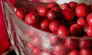 cranberries-bowl