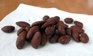 Cocoa-Coated Almonds *