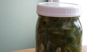 lf-pickled-jalapeno-pepper-slices