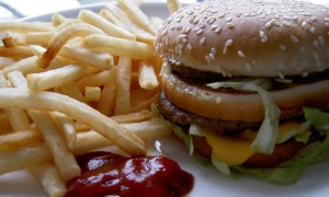 Burger & Fries - Fast Food