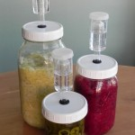 Group of Fermenting Jars