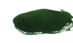 Spirulina: A Whole Food Nutrient for Everyone