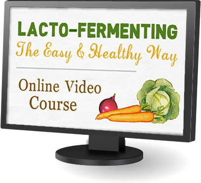 Lacto-fermenting Online Video Course