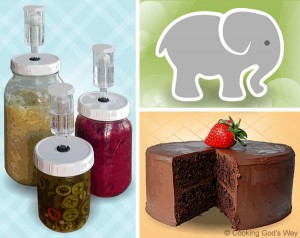 Lacto-Fermenting, 3 Elephants and Betty Crocker